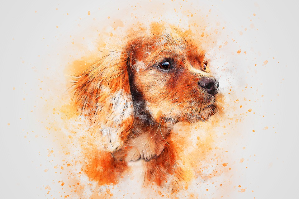Dog Drawing- These Are The Simple Steps To Draw It