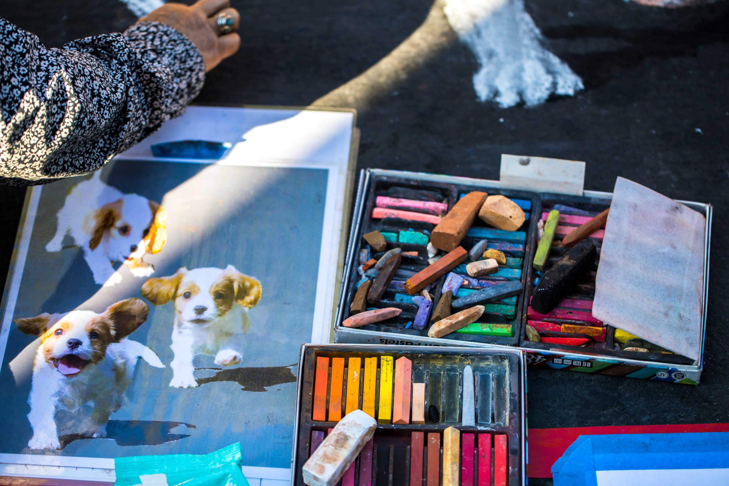 Dog Drawing Can Modify Your Personality- Home Design